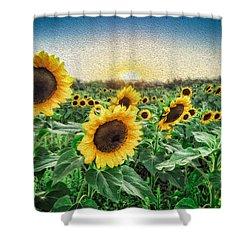 Field Of Sun Shower Curtain