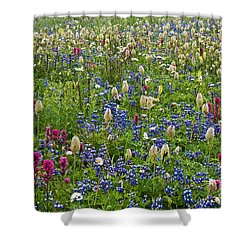 Field Of Wildflowers Shower Curtain by Greg Vaughn - Printscapes
