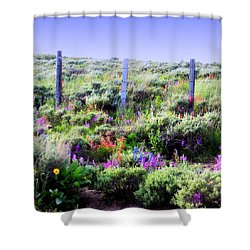 Shower Curtain featuring the photograph Field Of Wildflowers by Karen Shackles