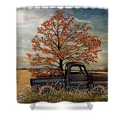 Field Ornaments Shower Curtain by Judy Kirouac