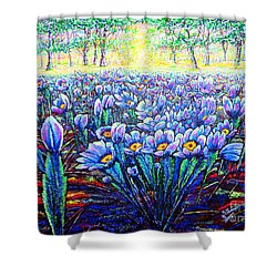 Field.flowers Shower Curtain by Viktor Lazarev
