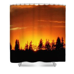 Fields Of Arbol Shower Curtain