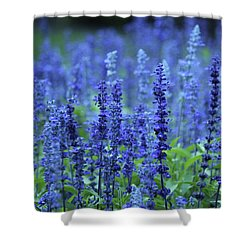 Fields Of Blue Shower Curtain