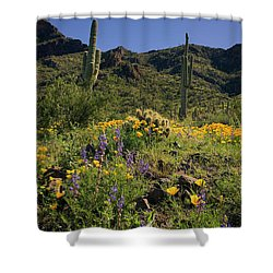 Fields Of Glory Shower Curtain