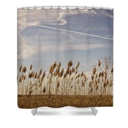 Fields O'grain Shower Curtain