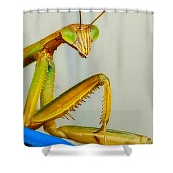 Fierce Lady Shower Curtain