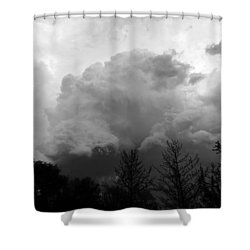 Shower Curtain featuring the photograph Fierce  by Teresa Schomig