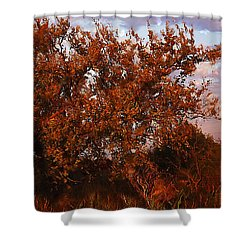 Shower Curtain featuring the digital art Fiery Elm Tree  by Shelli Fitzpatrick