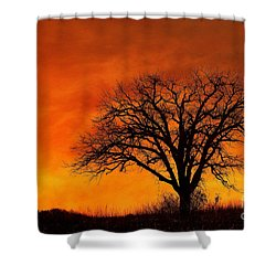 Shower Curtain featuring the photograph Fiery Treescape by Clare VanderVeen