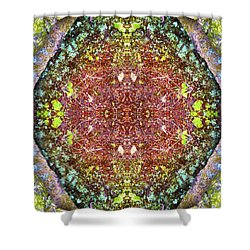 Fifth Dimension Shower Curtain