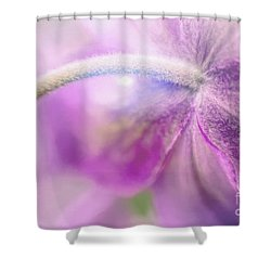 Fifth Gospel Shower Curtain