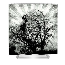 Fifty Cents For Your Soul Shower Curtain