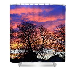 Shower Curtain featuring the painting Filigree Sunset by Nareeta Martin