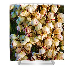 Filled With Joy Shower Curtain by Roberta Byram