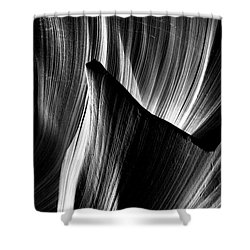 Fin Shower Curtain by David Cote