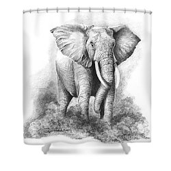 Final Warning Shower Curtain by Phyllis Howard