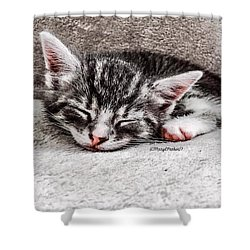 Finally Asleep  Copyright Mary Lee Parker 17  Shower Curtain by MaryLee Parker