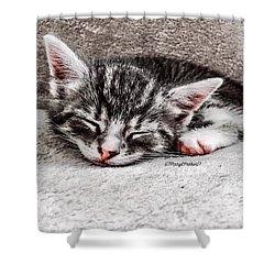 Finally Asleep  Copyright Mary Lee Parker 17  Shower Curtain