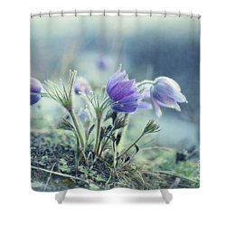 Finally Spring Shower Curtain