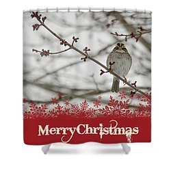 Shower Curtain featuring the mixed media Finch Christmas by Trish Tritz