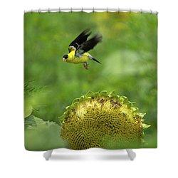 Finch Flight Shower Curtain
