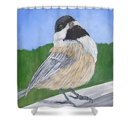 Finch Shower Curtain