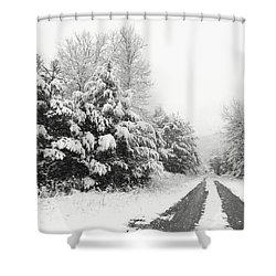 Shower Curtain featuring the photograph Find A Pretty Road by Lori Deiter