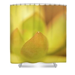 Shower Curtain featuring the photograph Find Focus In Nature by Ana V Ramirez