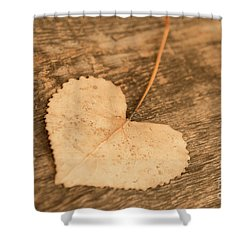 Shower Curtain featuring the photograph Finding Hearts by Ana V Ramirez