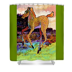 Finding His Legs Shower Curtain