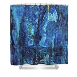 Finding The Star Shower Curtain