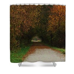 Shower Curtain featuring the photograph Finding The Way by J L Zarek