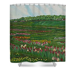 Finding The Way To You - Spring In Emmental Shower Curtain