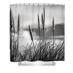 Fine Art Black And White-188 Shower Curtain