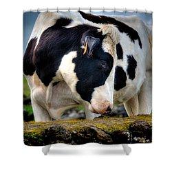 Fine Art Colour-136 Shower Curtain