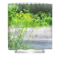Shower Curtain featuring the photograph Fine Creek No. 2 by Laura DAddona