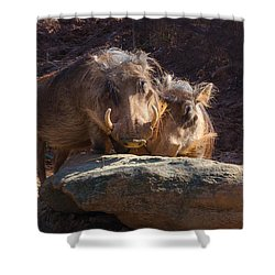 Fine Looking Couple Shower Curtain by Donna Brown