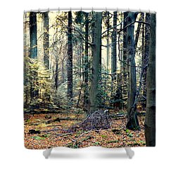 Fir Forest-2 Shower Curtain by Henryk Gorecki