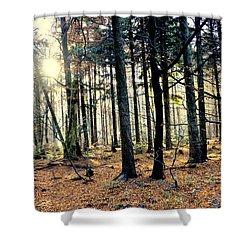Fir Forest-3 Shower Curtain