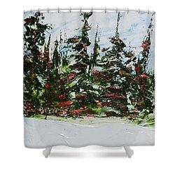 Fir Trees - Spring Thaw Shower Curtain