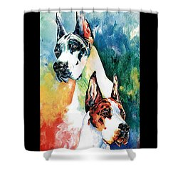Fire And Ice Shower Curtain by Kathleen Sepulveda