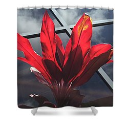 Fire And Ice Shower Curtain by Russell Keating