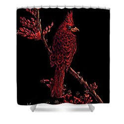Fire Cardinal Shower Curtain