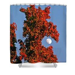 Fire Dragon Tree Eats Moon Shower Curtain
