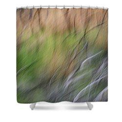 Fire Escape Shower Curtain