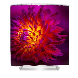 Fire Flower Shower Curtain by Bruce Pritchett