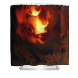 Fire In The Sky Shower Curtain by Jurek Zamoyski