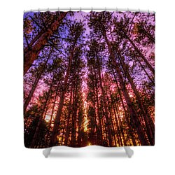 Shower Curtain featuring the photograph Fire Sky - Sunset At Retzer Nature Center - Waukesha Wisconsin by Jennifer Rondinelli Reilly - Fine Art Photography