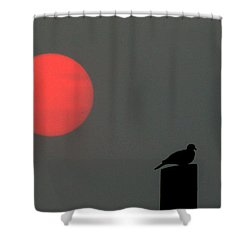 Fire Sun Sentinel Shower Curtain
