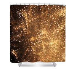 Fired Up Shower Curtain by Debbi Granruth
